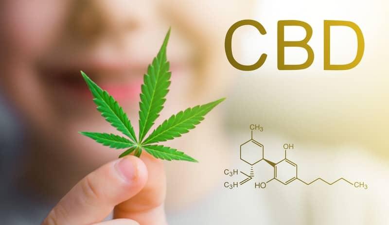 CBD-Hanf-cannabis ohne THC