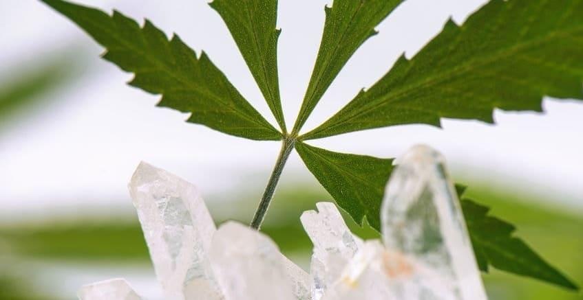 CBD-Kristalle-Einnahme-Verwendung