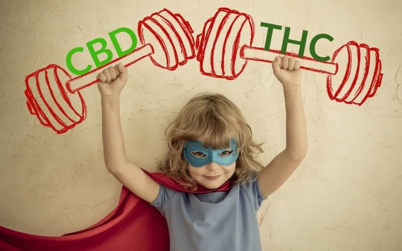CBD-Öl-ohne-THC-Cannabis