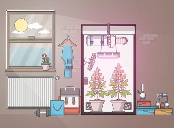 Growbox-CBD-zuhause