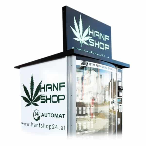 Hanf-Automaten-Stecklinge