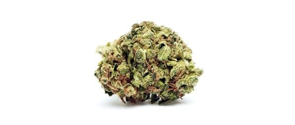 Hanfprodukte-Marihuana