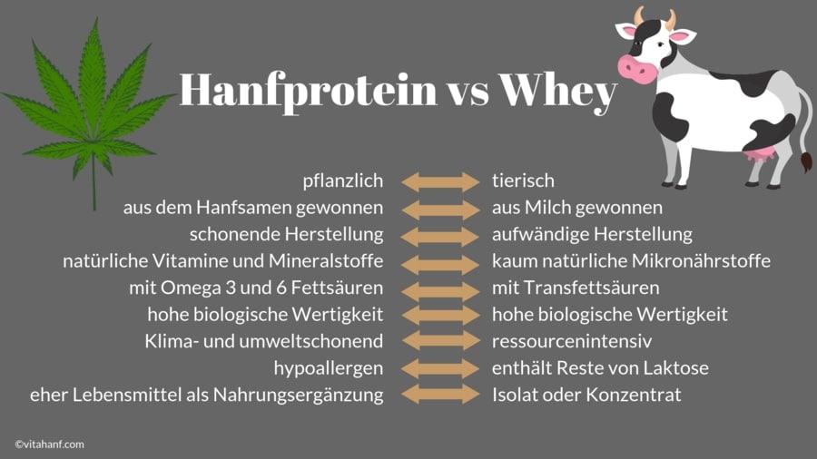 Eine Gegenübestellung von Hanfprotein und Wheyprotein.