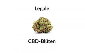 Legale CBD-Blüten Wirkung