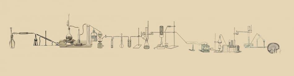 CBD Öl wissenschaftlich belegt