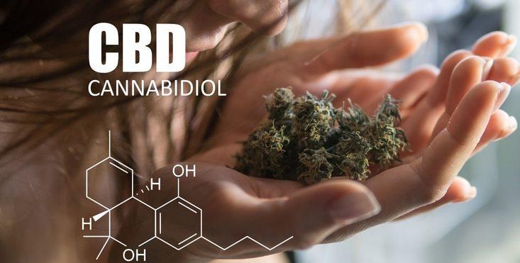 Eine Frau riecht an CBD Buds und denkt an die wunderbare Wirkung.