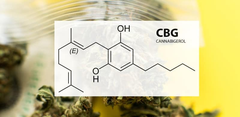 cbg-Cannabigerol-oel