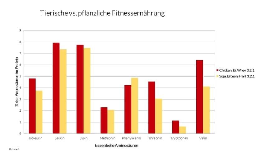 tierische-vs-pflanzliche-fitnessernährung-vitahanf